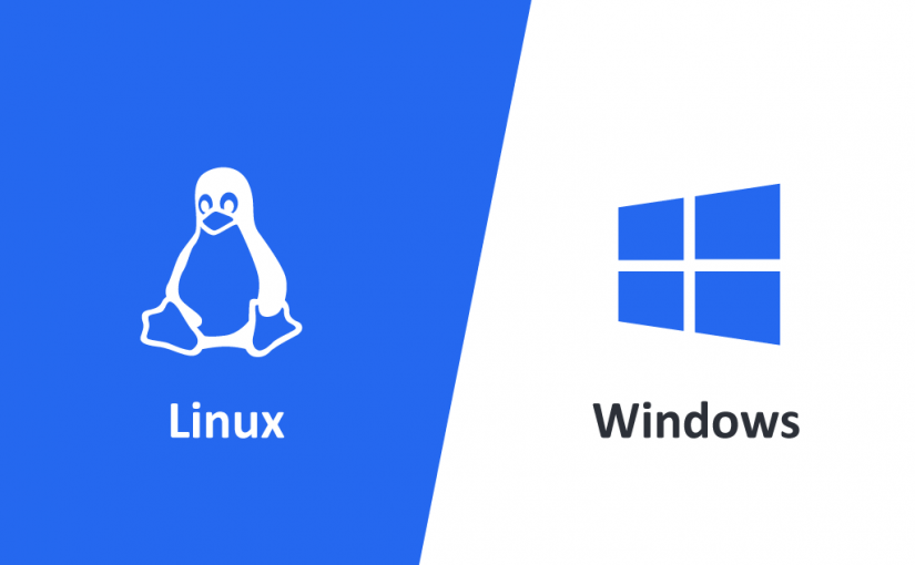 Linux and Windows Hosting
